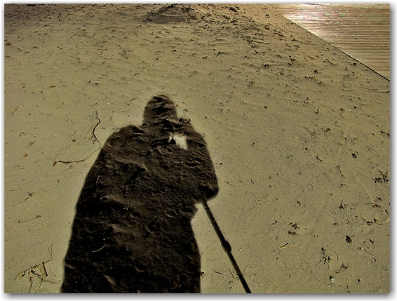shadow, silhouette, sand, woodbine beach, toronto, city, life