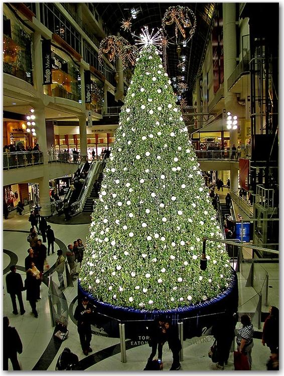 swarovski, crystal wish tree, glass, eaton centre, christmas, decorations, seasonal, downtown, urban, business, toronto, city, life