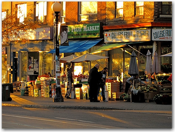 college street west, little italy, autumn, sunset, toronto, city, life