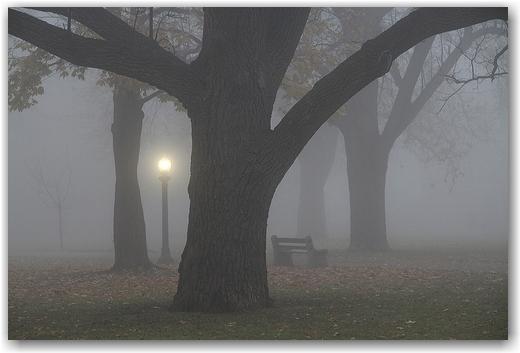 A Quiet Stillness...