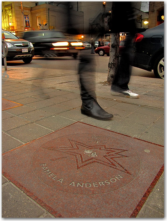 pamela anderson, canada's walk of fame, plaque, sidewalk, concrete, entertainment district, king street west, toronto, city, life