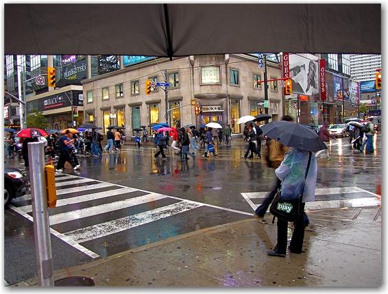 rain, umbrella, yonge, dundas, streets, intersection, autumn, fall, toronto, city, life