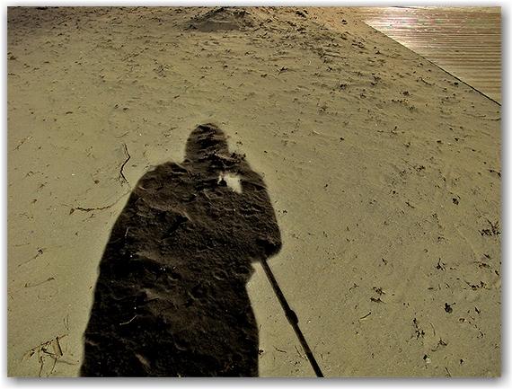 shadow, silhouette, sand, woodbine beach, toronto, city, life
