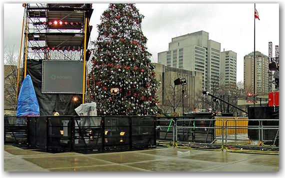 christmas tree, nathan phillip's square, new year celebration, rogers, citytv, toronto, city, life
