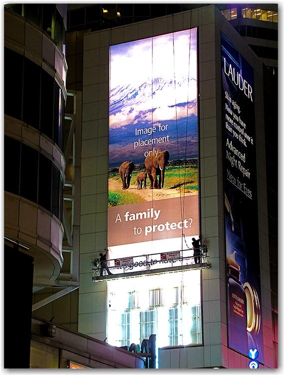 banner, advertising, advertisement, eaton centre, toronto, city, life