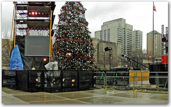 christmas tree, nathan phillip's square, new year celebration, rogers, citytv, toronto, city, life