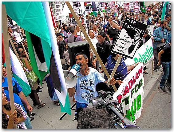 palestinian, israeli, protest, demonstration, march, rally, toronto, city, life