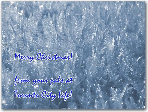 merry christmas, snow, ice, life