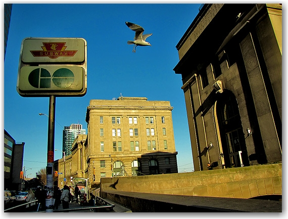 union station, go transit, toronto, transit commission, ttc, front street, toronto, city, life