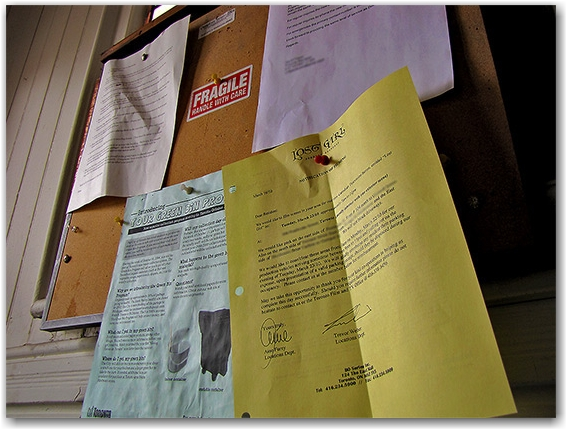 lost girl, tv, television, series, show, notice, corkboard, toronto, city, life