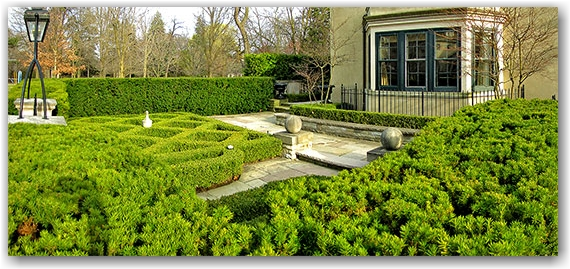 hedge sculptures, front yard, rosedale, toronto, city, life