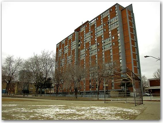 baseball field, diamond, nelson mandela public school, regent park south, public housing project, toronto, city. life