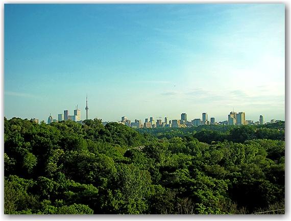 skyline, panorama, don valley parkway, dvp, toronto, city, life