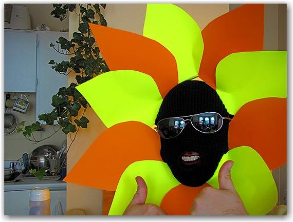 sunflower, halloween, costume, toronto, city, life