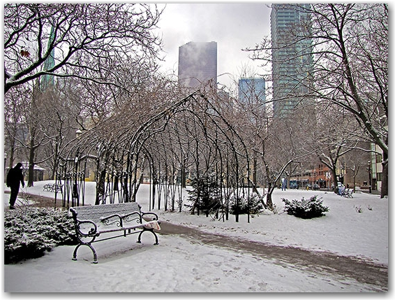 snow, st. james park, cathedral, toronto, city, life, blog