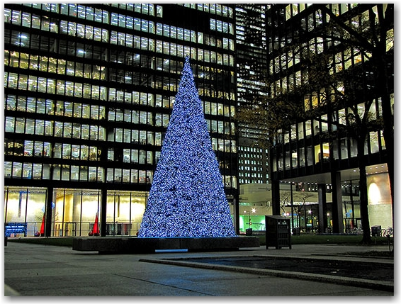 tree, business distrct, td centre, toronto-dominion centre, christmas, decorations, seasonal, downtown, urban, business, toronto, city, life