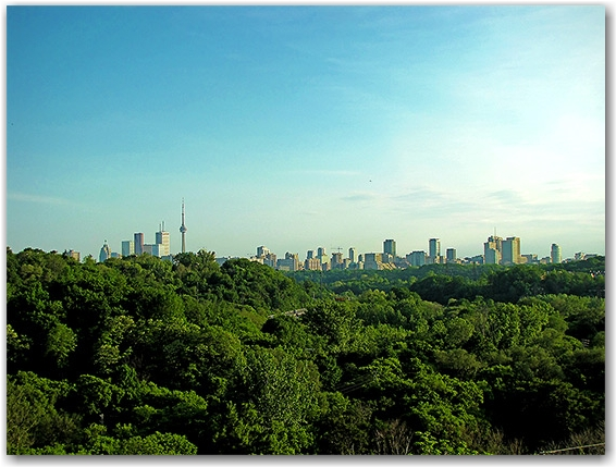 skyline, panorama, don valley parkway, dvp, toronto, city, life