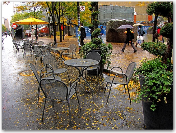 gould street, fall, autumn, tables, ryerson university, toronto, city, life
