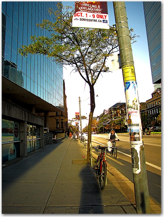 college street west, autumn, sunset, toronto, city, life
