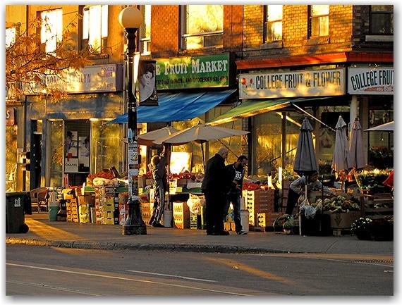 college street west, little italy, autumn, sunset, toronto, city, life