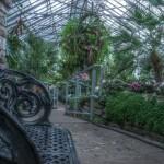http://www.torontocitylife.com/2009/01/23/the-apocalyptic-allan-gardens/