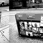 http://www.torontocitylife.com/2009/06/22/war-on-trash-day-1/
