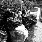 http://www.torontocitylife.com/2009/06/24/war-on-trash-day-3/
