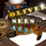 http://www.torontocitylife.com/2009/11/23/cat-ouija/