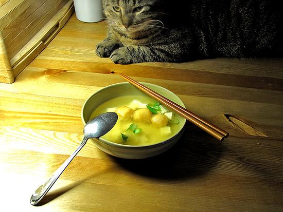 miso soup ingredients, green onions, fish balls, silken tofu, toronto, city, life