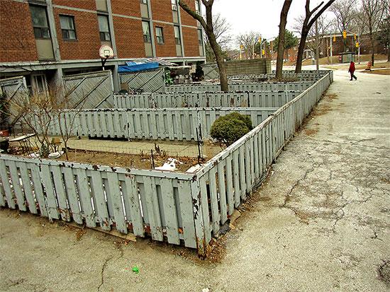south regent park, shuter street, community public housing, apartments, flats, toronto, city, life